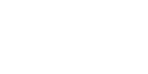 DVS logo blanco